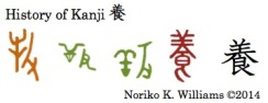 History of Kanji 養