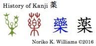 History of Kanji 薬