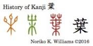 History of Kanji 葉