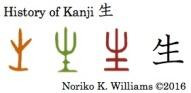history-of-kanji-%e7%94%9f