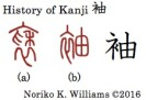 history-of-kanji-%e8%a2%96
