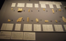 Oracle Bone Writings -Photo (1)
