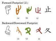 forwardbackwardfeet