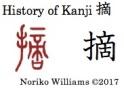 History of Kanji 摘