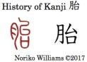 History of Kanji 胎