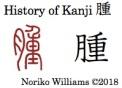 History of Kanji 腫